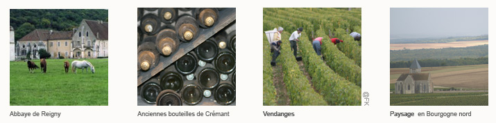 BandeauItineraire Auxerre Vezelay <!  :fr  >De Chablis à Vézelay<!  :  ><!  :en  >From Chablis to Vezelay<!  :  >