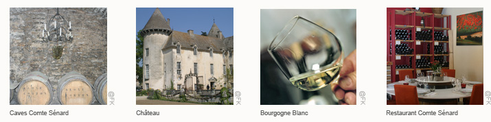 Bandeaux Itineraire Nuits St Georges Beaune 2 <!  :fr  >De Nuits Saint Georges à Beaune<!  :  ><!  :en  >From Nuits Saint Georges to Beaune<!  :  >