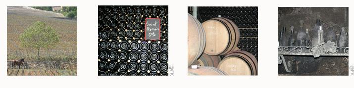 Bandeaux Region Bourgogne cotes d or <!  :fr  >Bourgogne<!  :  ><!  :en  >Burgundy<!  :  >