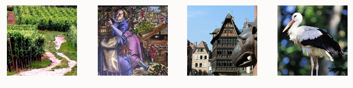 Bandeaux Region alsace <!  :fr  >Alsace<!  :  ><!  :en  >Alsace<!  :  >