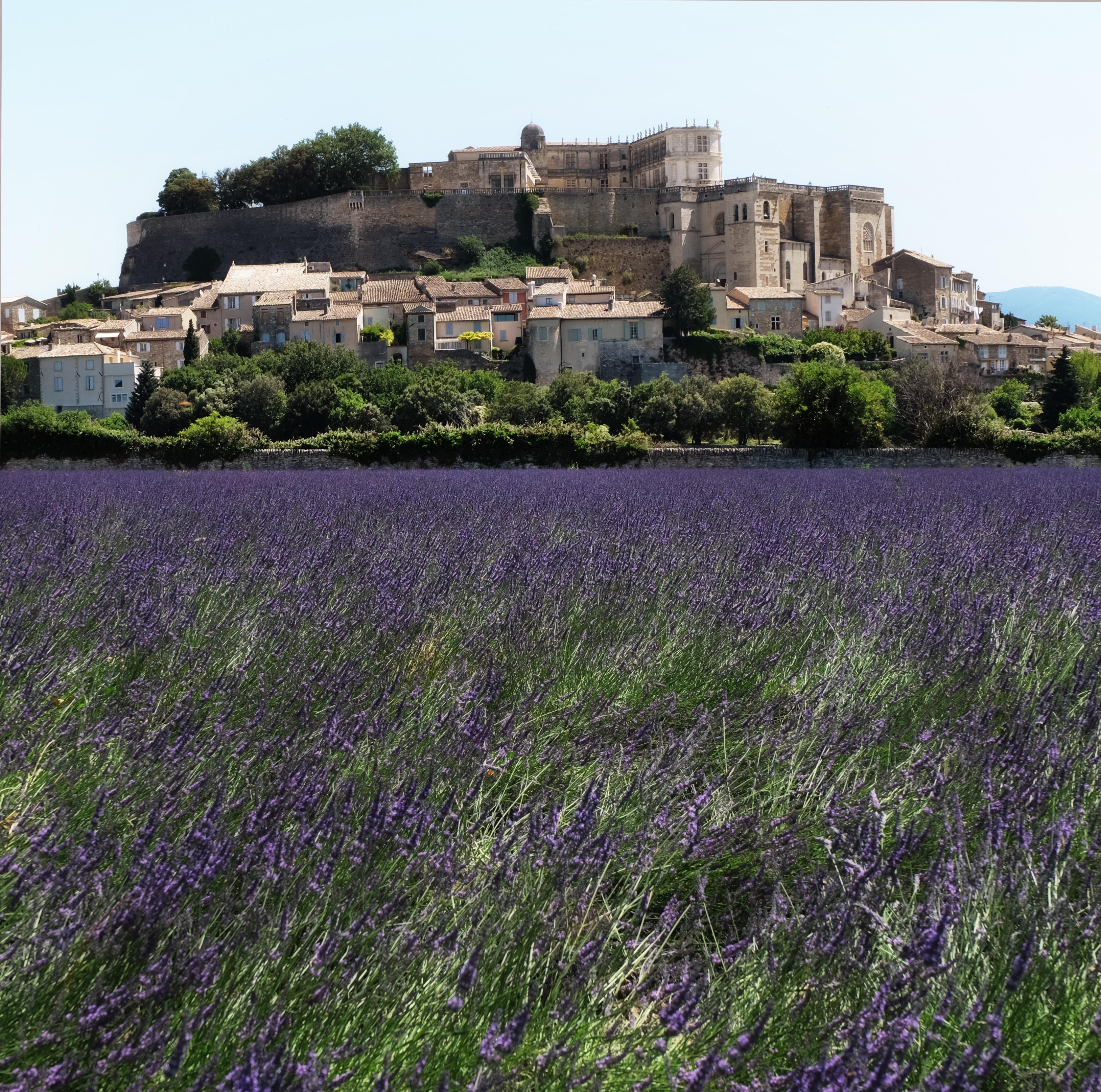Chateau_Lavande.273